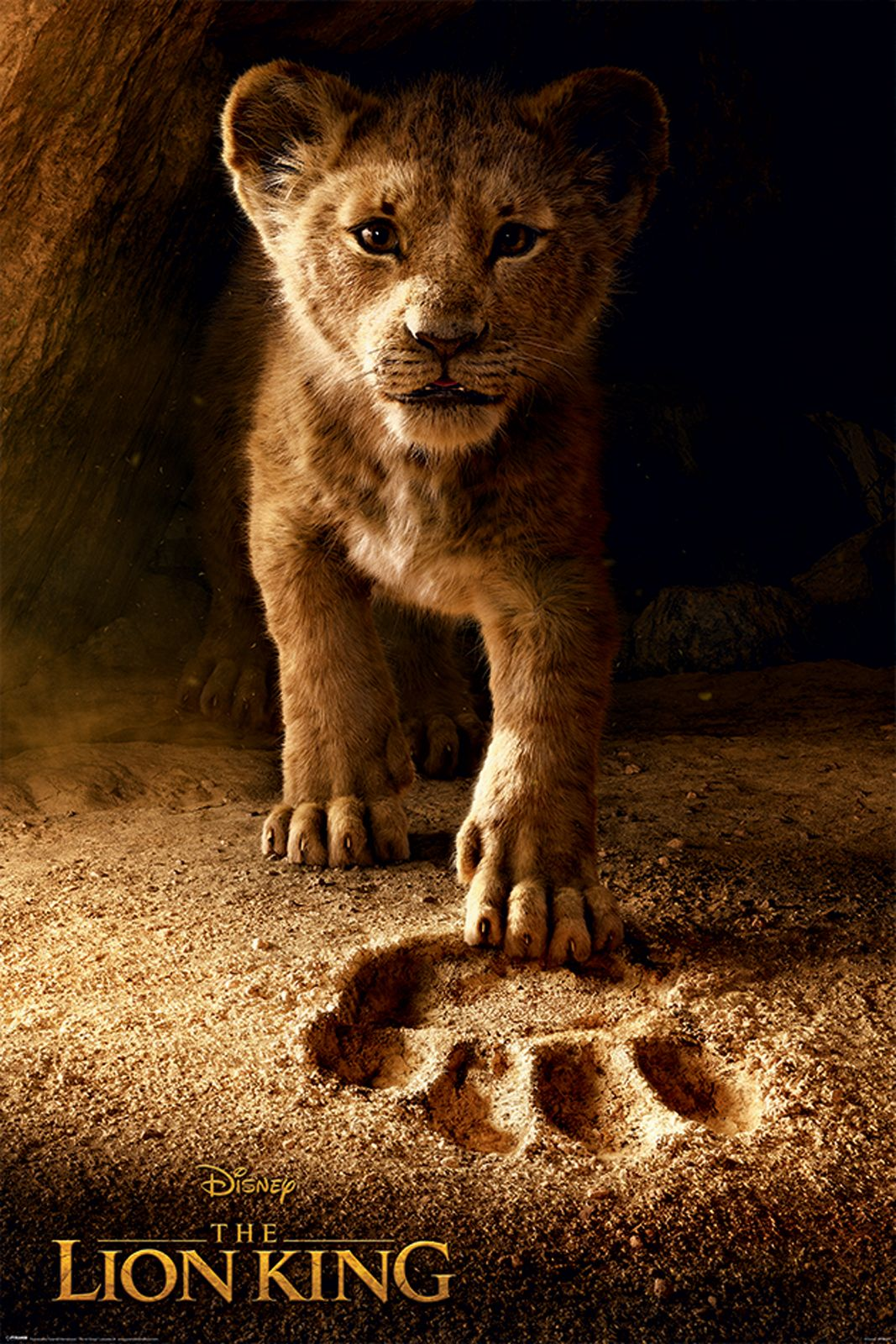 El Rey León (2019) Pp34477-the-lion-king-movie-future-king-maxi-poster-copy-jpg