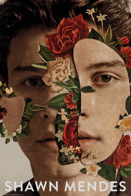 Shawn Mendes Flowers - plakat