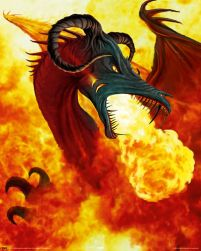 Fire dragon - plakat