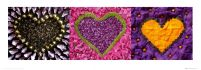Madalenes Hearts purple - reprodukcja
