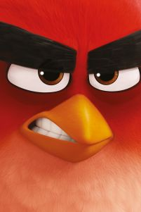 Angry Birds (Red) - film - plakat