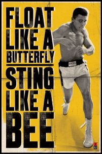 Muhammad Ali (Float Like A Butterfly) - plakat 61x91,5 cm