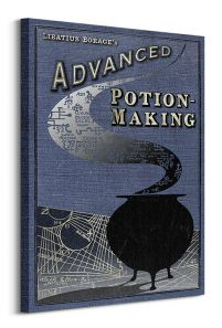 Harry Potter (Potion Making) - Obraz