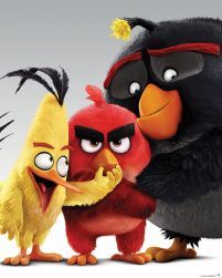 Angry Birds (Characters) - plakat
