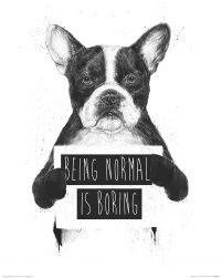 Being Normal is Boring - reprodukcja