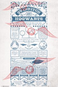 Harry Potter Quidditch At Hogwarts - plakat z filmu 61x91,5