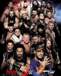 WWE Raw VS Smackdown - plakat