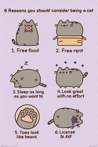 Pusheen (Reasons to be a Cat) - plakat