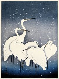 Egrets on a Snowy Night - reprodukcja