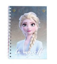 Frozen 2 Sisters - notes A5