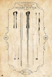 Harry Potter The Wand - plakat