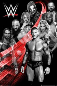 WWE Superstars Swoosh - plakat